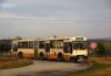 Ikarus 160P #1051  PKS Kielce.