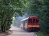 W drodze do Anastazewa