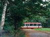 Duewag M6S w lesie