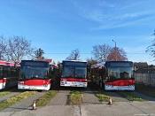 Solaris Urbino 12 #9121