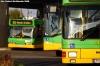 Autobusowo